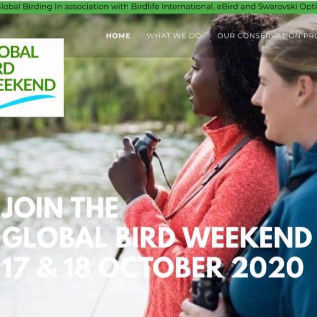 Global Bird Weekend