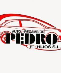 Auto Recambios Pedro, La Linea